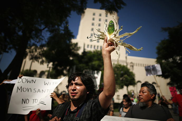 "A man holds painted ear of corn during one of many worldwide ""March Against Monsanto"" protests against GMOs and agro-chemicals, in Los Angeles"
